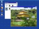screenshot6133x100